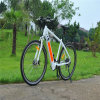 France and Germany Popular MTB Ebike Mountain Electric Bike 250W