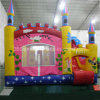 Castillo inflable combinado (74)