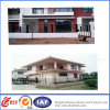 Decorativel Multifunctional Safety Wrought Iron Fence (dhwallfence-10)