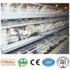놓는 암탉을%s 닭 농장 가금 건전지 감금소