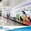 زجاجيّة مينا لوح يجوّي مصنع الصين, [سوبوي ستأيشن] جدار [كلدّينغ بنل], مقاومة ونار - مقاومة, [فر سمبل]. [رف-ب-004]