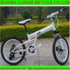 テンシン20  Foldable MTBの自転車