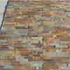 Выращиванная в питательной среде: плитка камня плакирования каменной стены