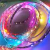 굉장한 풀 컬러 SMD 2811 마술 가동 가능한 LED 지구 (VSS 2811-60N-7.2W-12V)