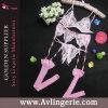 Ensemble de G-Corde de ceinture de jarretière de bas du lacet de 2015 femmes