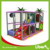 Presidente de Wenzhou Toy Association Small Indoor Playground