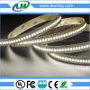 indicatore luminoso di striscia flessibile di 6240Lm/m SMD 2835 240LEDs LED con CE RoHS
