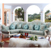 Sofà del tessuto impostato/sofà del salone/sofà di legno (D801)