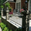 Design moderno Ornamental Steel Fence per il giardino e Porch