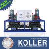 Koller 2016 30 блока льда тонн конструкции машины для индустрии рыбозавода