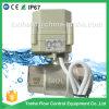1  Dn25 2 modo 12V 24V ha motorizzato la valvola a sfera spenta l'acqua elettrica