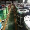 Dx51d Sgch/SGCC Prepainted a bobina de aço galvanizada revestida cor