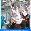 Cer Cattle Halal Abattoir Equipment in Slaughterhouse