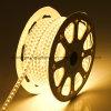 고전압 220V RGB LED 지구 5050 (XXW-HS-5050RGB)