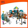 Crianças Amusement Outdoor Equipment (2231A)