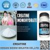 Креатин дополнения здравоохранения безводный (57-00-1)