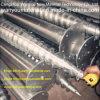 O MERGULHO quente galvanizou o parafuso à terra de aço feito em China