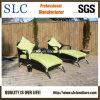 Salotto del Chaise/salotto esterno disegno moderno/salotto del giardino impostato (SC-A7315)