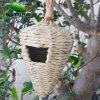Tipo di legno del Birdhouse vario, gabbia di uccello