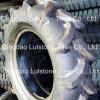 Teste padrão agricultural da luz do pneumático da polarização do teste padrão R-1 (8.00-16)