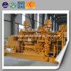 Générateur électrique de gaz d'énergie de centrale de générateur à gaz vert de biomasse