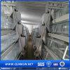 Buena calidad y jaula caliente del pollo de la venta