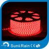 최신 고품질 전기 LED 밧줄 빛