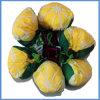 Figura della frutta che piega il sacchetto pieghevole d'acquisto dei sacchetti di figura riutilizzabile del limone