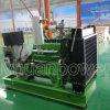 biogas 50kw che genera le unità