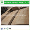 3mm Wood Veneer Laminated/Melamine Woodgrain HDF Door Skin
