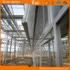 장기 사용 네덜란드 기술 다중 경간 유리제 녹색 집