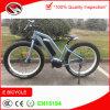 Mittleres Laufwerk-elektrischer Berg' Bafang Bewegungselektrische Fahrrad-grosse Energien-elektrisches Fahrrad fahrrad/26