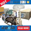 Block-Eis-Maschine des Behälter-30t direkte abkühlende für Bangladesh/Mali