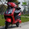 2 motorino elettrico di stile di modo della rotella 1000W per gli adulti
