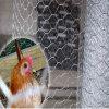 Soldagem hexagonal Força de tensão elevada rede de fio personalizada para frango / aves de capoeira