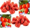 De Bes wolfberry) Goji van Ningxia van Lycium Barbarum (