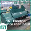 Shengqi 2016 alzamiento de cuerda eléctrico de alambre de 15 toneladas