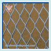 Buiding를 위한 탄소 Steel/Galvanized/Expanded Metal