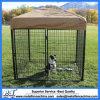 Jaula segura del recinto de la corrida de la perrera de los animales domésticos de la conexión de cadena
