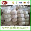 よい価格の2017新しい穀物の正常で白いニンニク