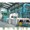 La Chine Blasting Shot Cleaning Machine avec Roller Conveyor