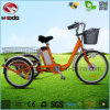 Buen regalo a más viejo con el triciclo eléctrico del cargo de la bicicleta