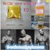 Esteroides inyectables Boldenone Undecylenate (EQ) /Bu del crecimiento del músculo de la pureza del 99%