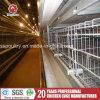 In 20 Jahren bearbeitet Marken-Huhn Hersteller-heiße galvanisierte Geflügel-Rahmen maschinell