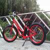 女性の脂肪質のタイヤの電気バイクの熱い販売(RSEB-506)