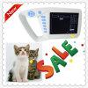 Sistema del ultrasonido de la palma Handheld del ultrasonido/Atnl51353c del veterinario/precio/China animales del explorador del ultrasonido/del explorador del ultrasonido