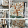 Sale KitchenのためのVerniz Tropical Granite Countertopsの新しく、Hot