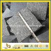 De groene Straatsteen van het Porfier/Kubieke Steen/Cubestone