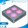 넓은 적용 LED는 가벼운 실내 온실을 증가한다