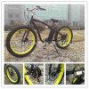 Bicicleta elétrica gorda de Europa do poder verde com CE En15194